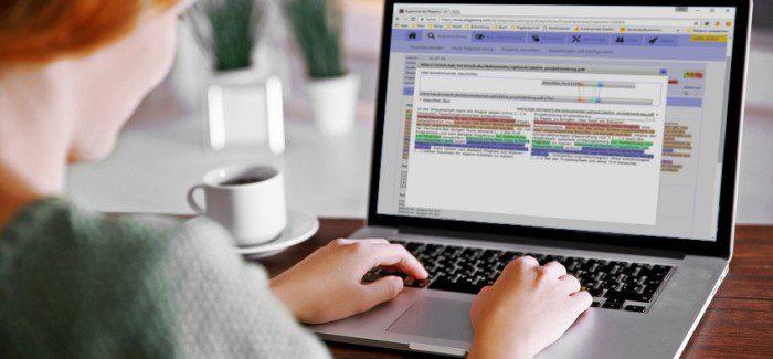 Plagiatsprüfung einer Bachelorarbeit